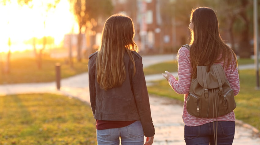 """Mädchen, die sich am frühen Abend im Park über """"dein-Warum"""" unterhalten"""